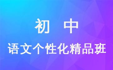 状元100教育初中语文个性化精品课